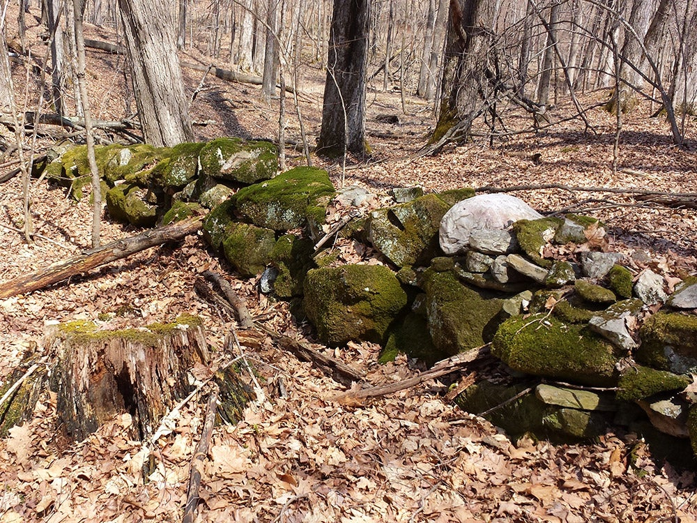 stone walls covered in moss