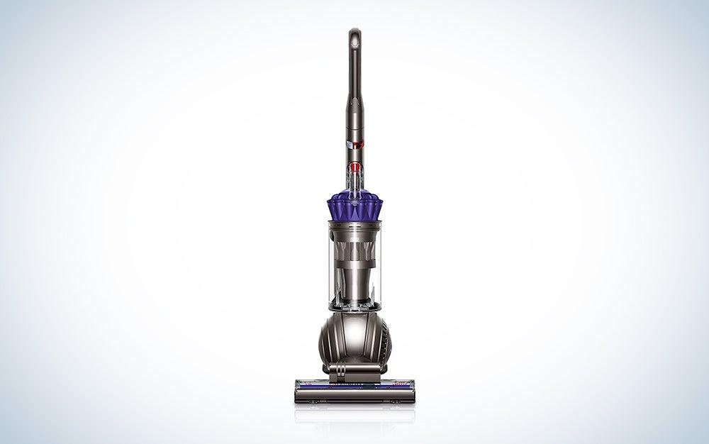 Dyson Animal ball vacuum