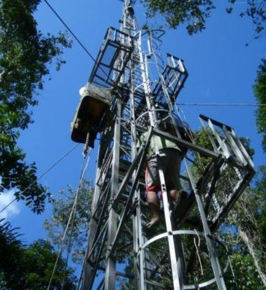 130 Feet Above the Amazon Rainforest, Scientists Sample the Last Pristine Air on Earth