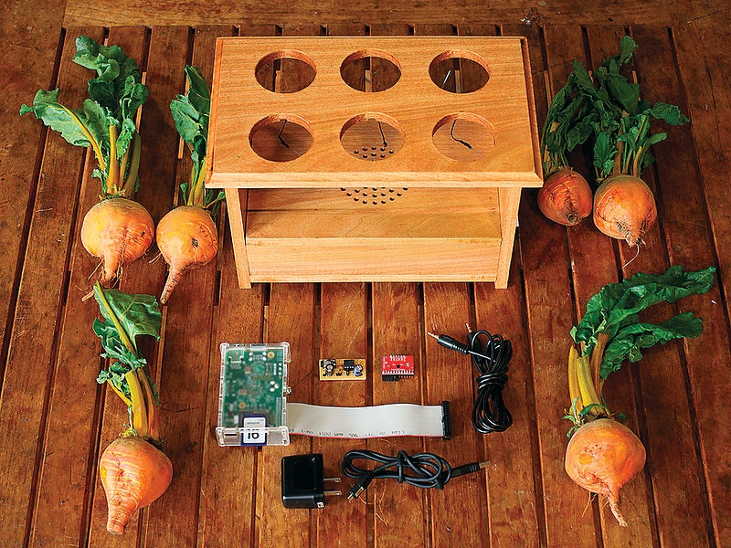 How To Turn Garden Beets Into A Drum Machine