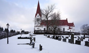 Bats are disappearing from churches in Sweden, and that's not a good thing