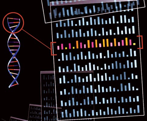 Putting the Gene back in Geneology