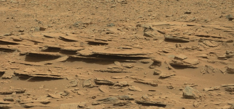 Earth Bacteria Can Survive And Grow In Extremely Hostile, Mars-Like Conditions