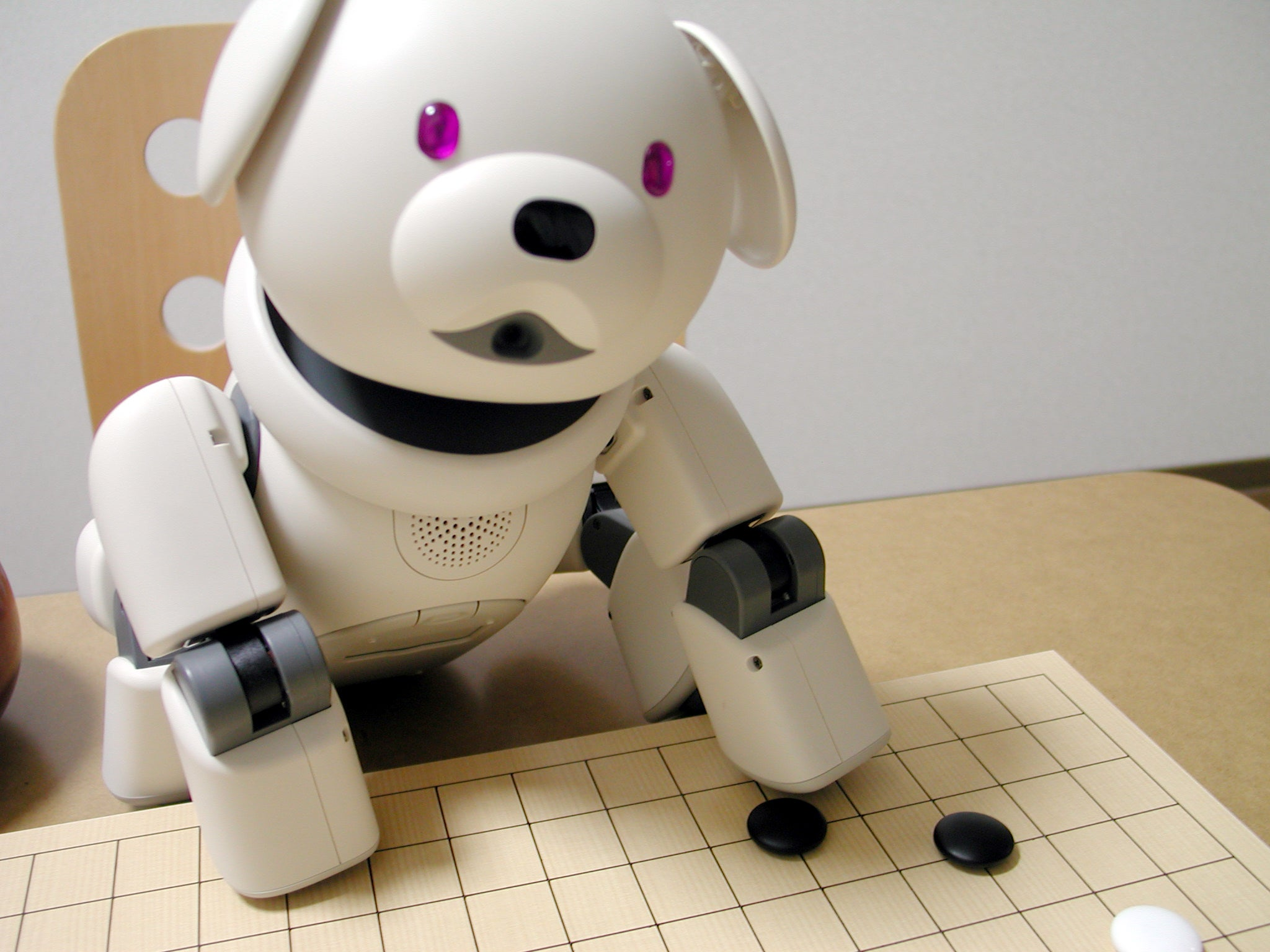 In Japan, A Funeral For Robot Dogs