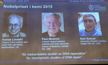 Nobel Prize In Chemistry Goes To 3 Scientists Who Uncovered DNA Repair