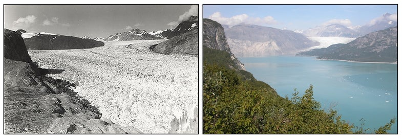 Photo pair of the Muir glacier 1941 and 2004