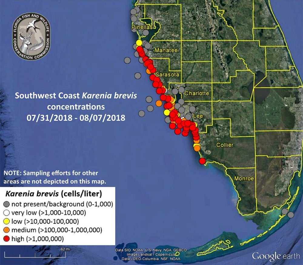 Florida red tide outbreak