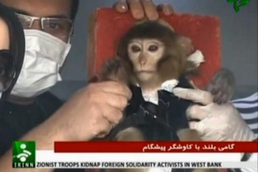Was Iran's Monkey Launch A Fake?