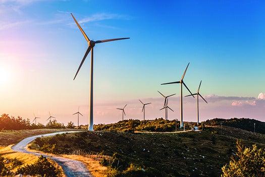 FYI: Do Wind Farms Make It Less Windy?