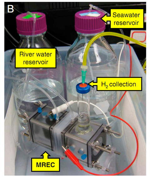 Self-Powered Microbial Fuel Cells Could Serve Up Unlimited Hydrogen Supply