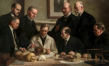 Researchers Pin Down Old Fossil Hoax To One Suspect