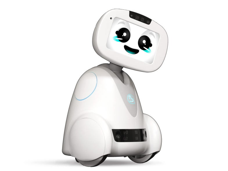 Buddy The Robot: A robot at your beck and call