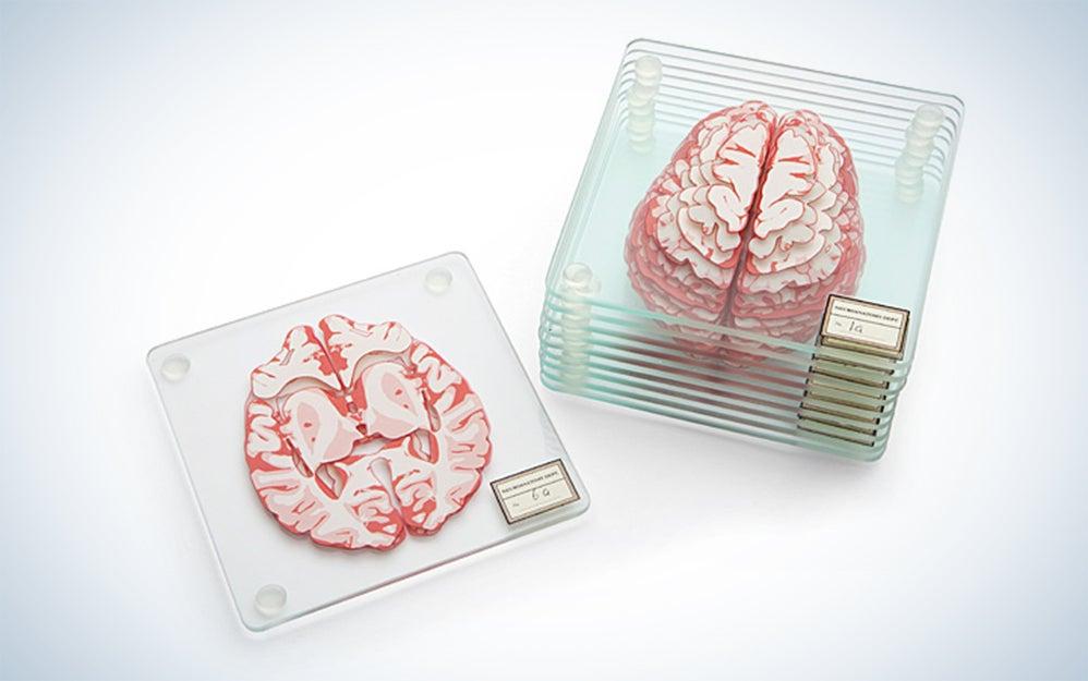 Brain specimen coasters