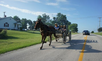 In Which We Compare Our Electric Vehicle to the Organic Vehicle–the Amish Horse and Buggy