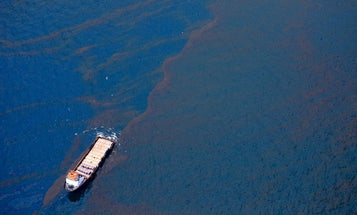 Oil Spills: Uncovering A Battle Between Technology and Ecology