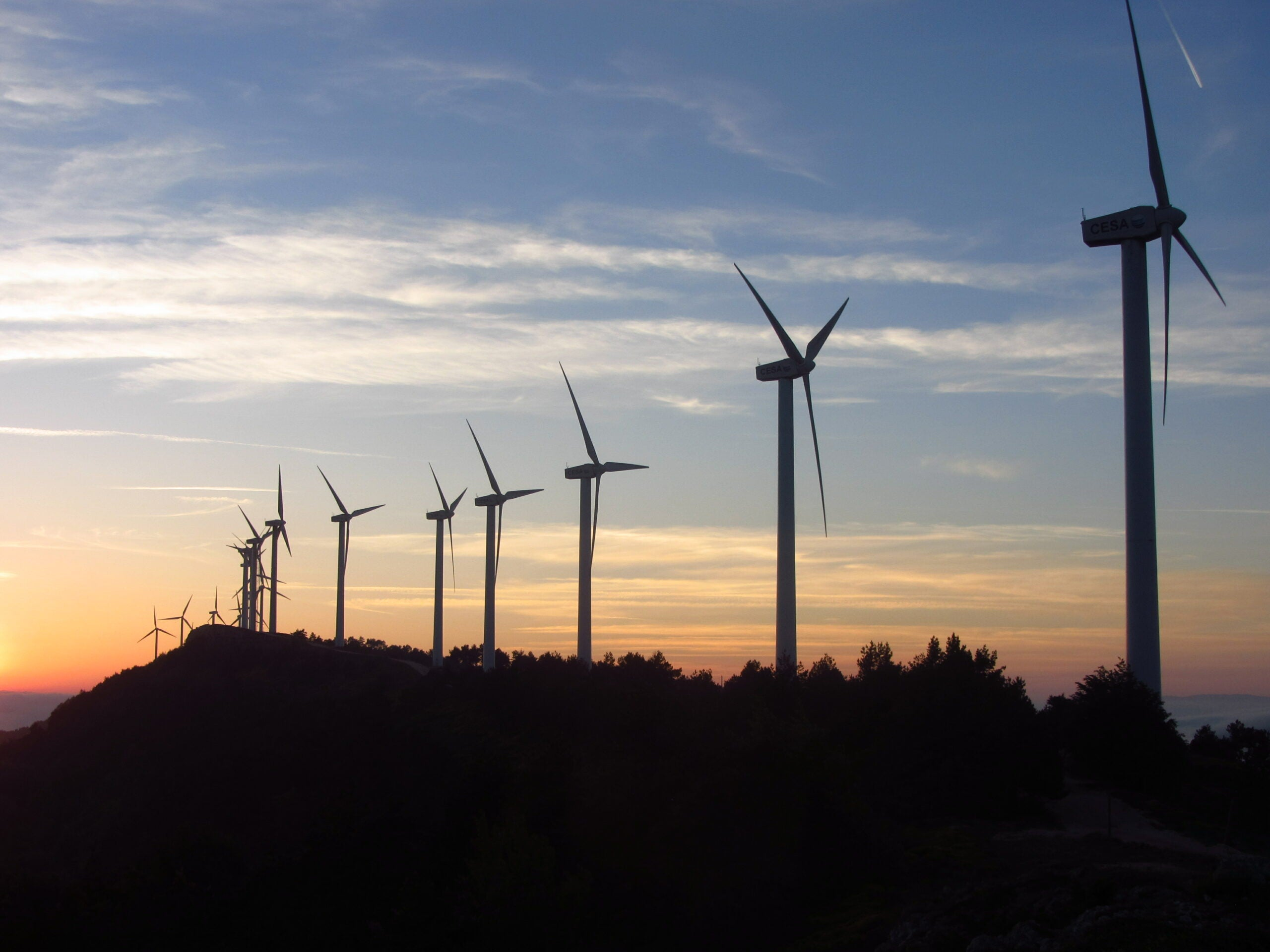 Wind Farms Will Slow Down During Bat Migrations