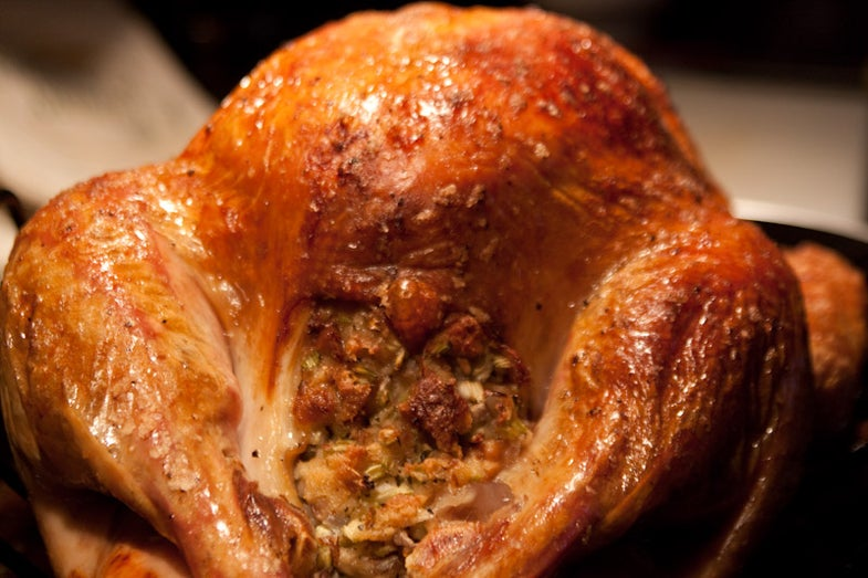 stuffing in turkey