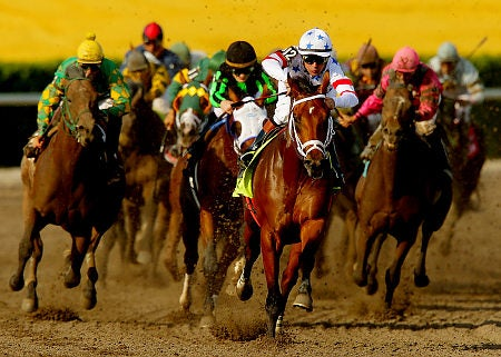 Why Race Horses Are Dying