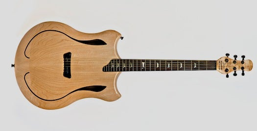 Pegasus Review: The Acoustic-Electric Guitar, Reinvented