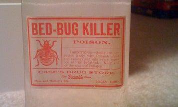 Don't Let the Bedbugs Bite