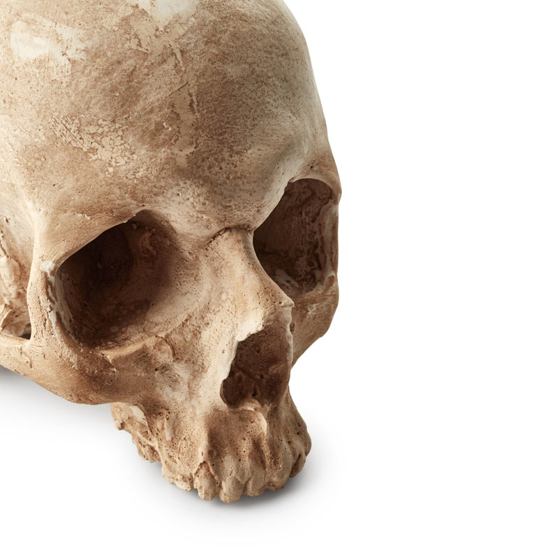 Scientists just uncovered the cause of a massive epidemic using 500-year-old teeth