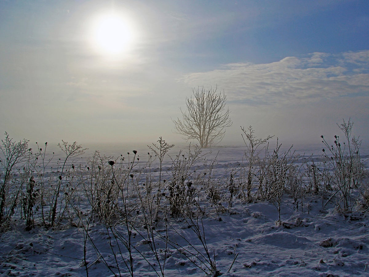 What is a solstice? And other questions about the shortest day of the year, answered