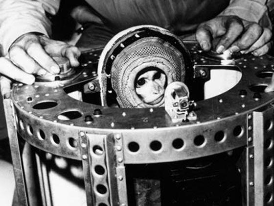 The Alberts, Spaceflight's Unsung Heroes