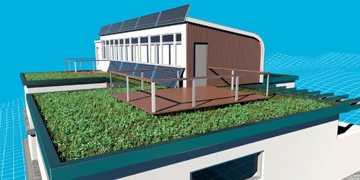 Green Dream: Installing a Rooftop Garden