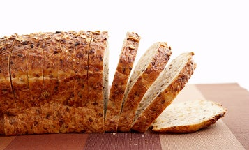 What If You Could Insulate Your House With Toast?