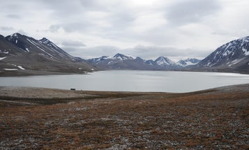 Weird, Extra Small Viruses Discovered In Remote Arctic Lakes