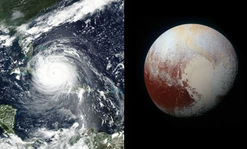 WATCH: How big was Hurricane Irma when it hit Florida?