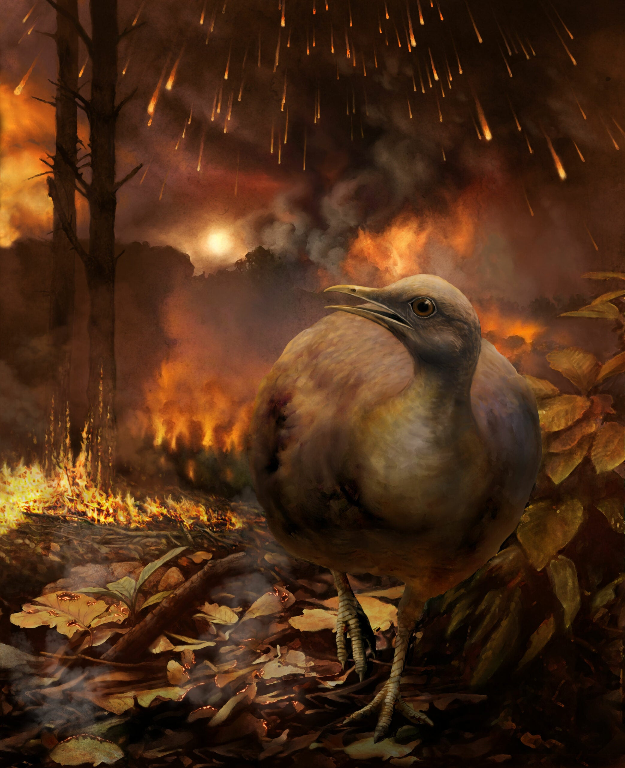 How modern-day dinosaurs survived the apocalypse