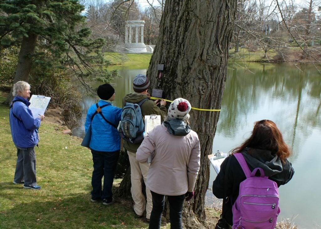 Mount Auburn Cemetery Cambridge Massachusetts citizen science