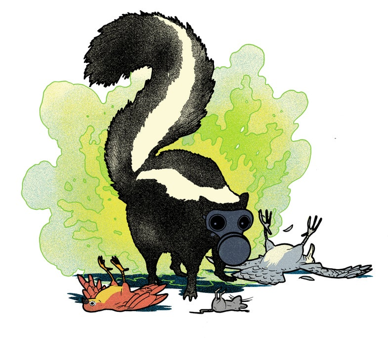 Illustration of a skunk wearing a gas mask and emitting fumes. The skunk is surrounded by unconscious animals.
