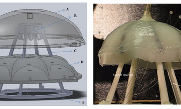 Meet Robojelly, the Hydrogen-Powered Jellyfish-Shaped Immortal Underwater Surveillance Robot