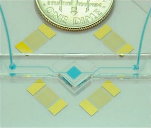 """""""Acoustic Tweezers"""" Can Manipulate Tiny Organisms Using Sound Waves"""