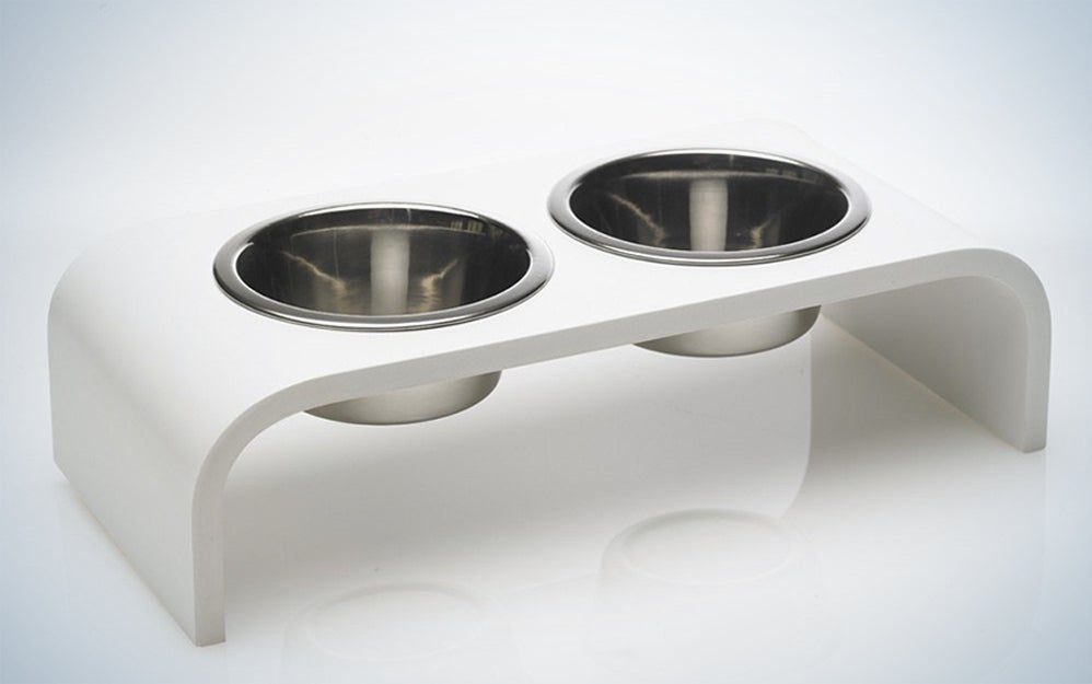 Modern Elevated Watering Bowl
