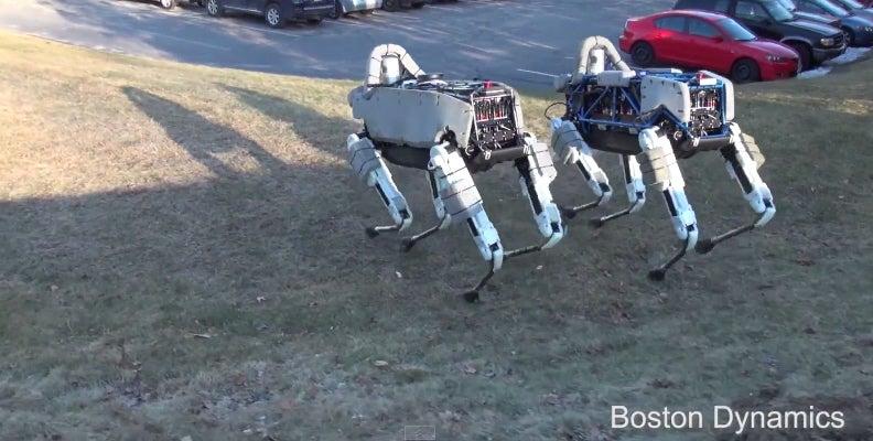 Big Dog Robot Family Gets A Faster, Lighter Little Brother
