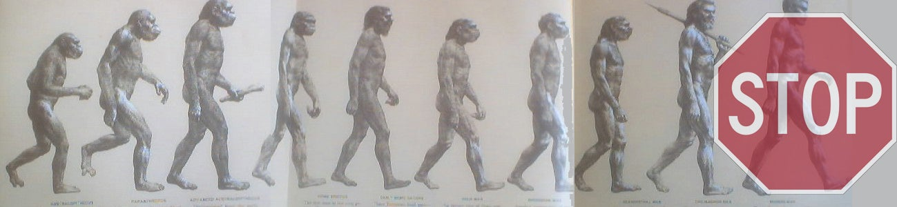 Human Evolution is Coming to a Standstill