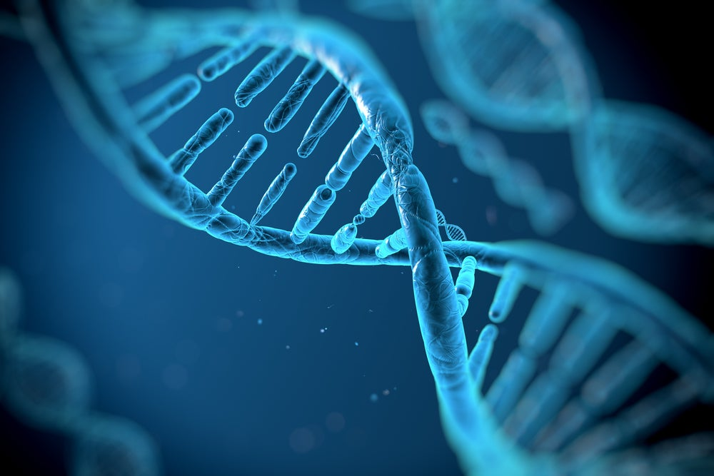 The first genetically engineered humans might not have their DNA tweaked at all