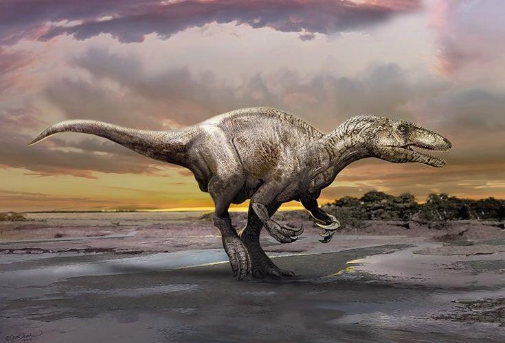 """Murusraptor"