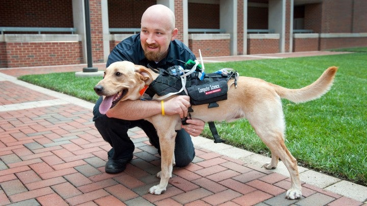 High-Tech Harness Lets You Communicate With Your Dog