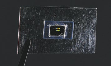 The Newest Revolutions in Metamaterials Bring Invisibility Within Reach