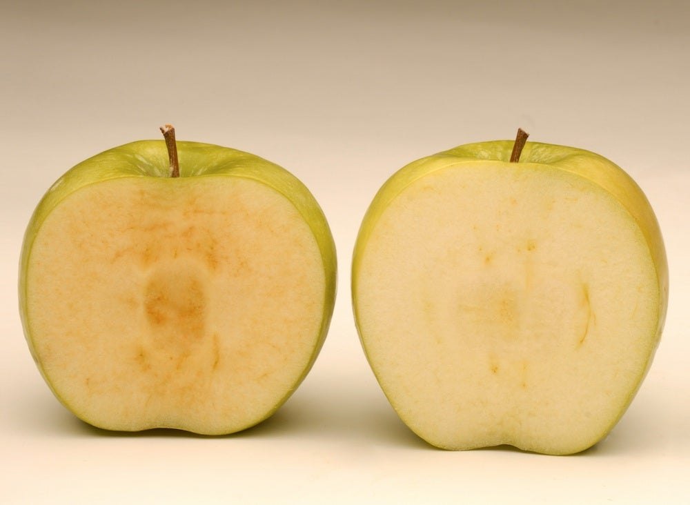 One Farmer And His Engineered Non-Browning Apples