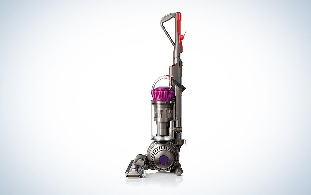 Dyson Ball Animalupright vacuum