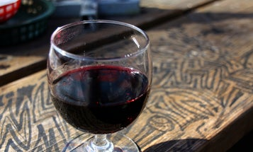 Drink Up! Red Wine Can Counteract the Negative Aftereffects of Space Travel