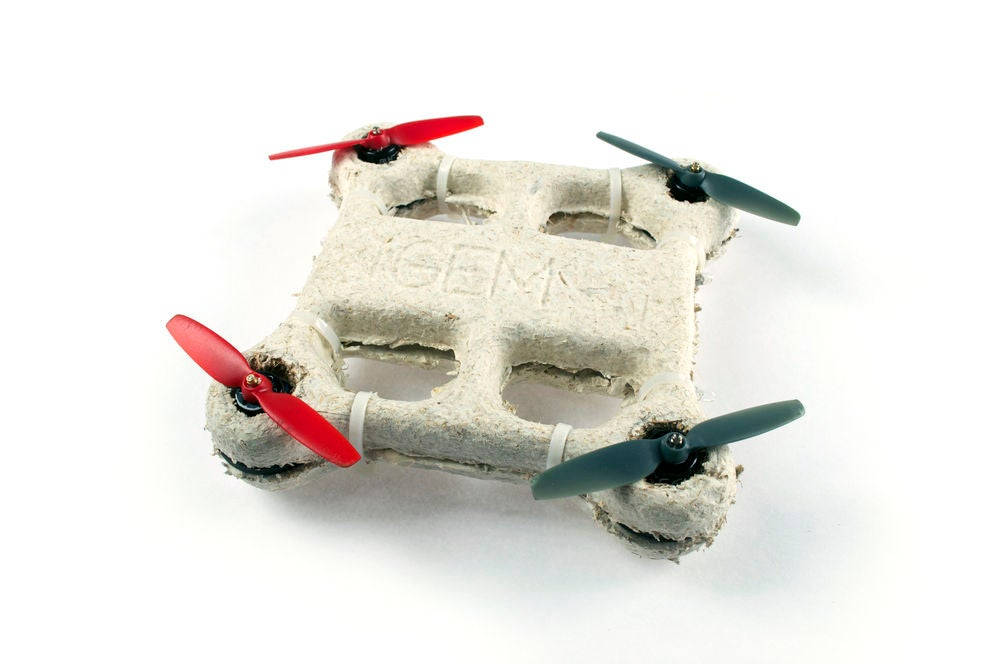 fungal drone