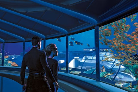 1,200 Square Feet Under the Sea