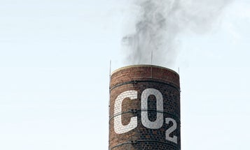Human Blood May Hold the Secret to Clean Coal