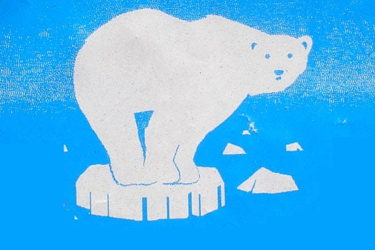 Daily Infographic: What Is The Real Status Of The Polar Bears?